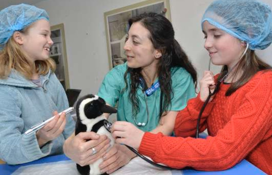 Aspiring vets in St Albans and Harpenden