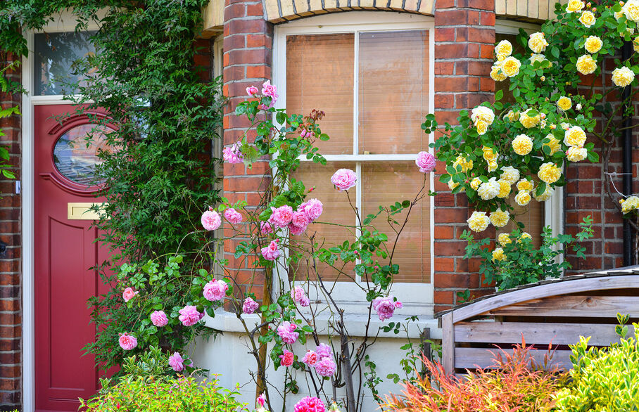 Garden responsibilities for landlords and tenant