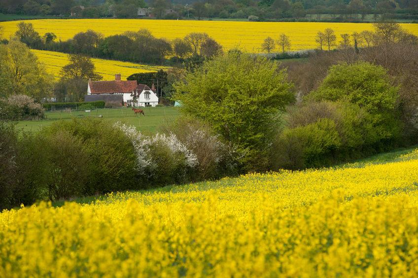 Saffron Walden and Clavering – hot spots for commuters