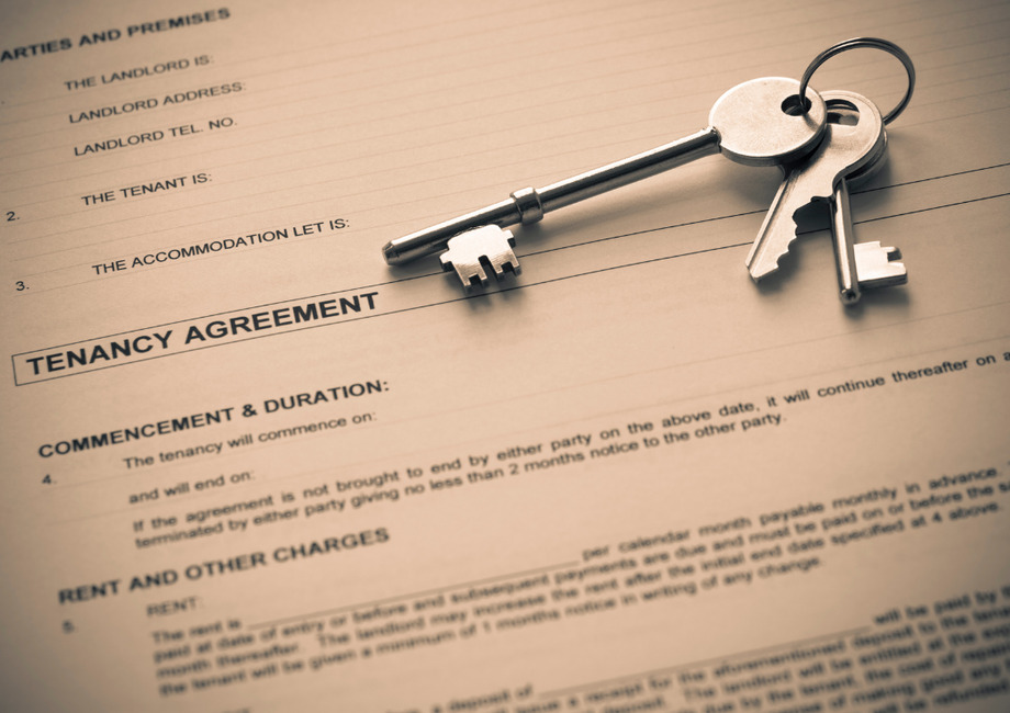 Great Dunmow – Change In Tenancy Agreement Great News For Pets