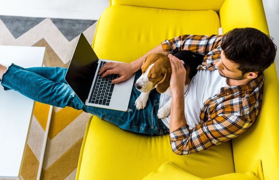 Tips For Landlords When Letting To Tenants With Pets